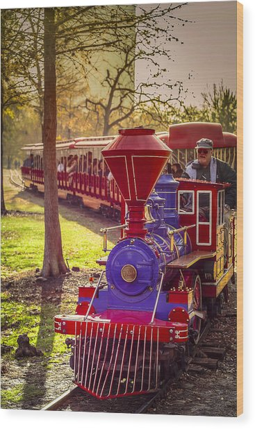 Riding Out Of The Sunset On The Hermann Park Train Wood Print