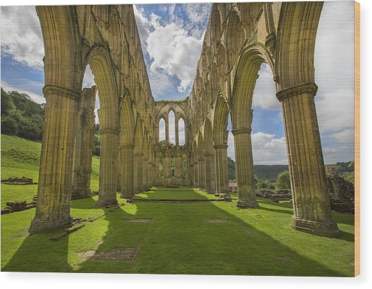 Rievaulx Abbey Wood Print