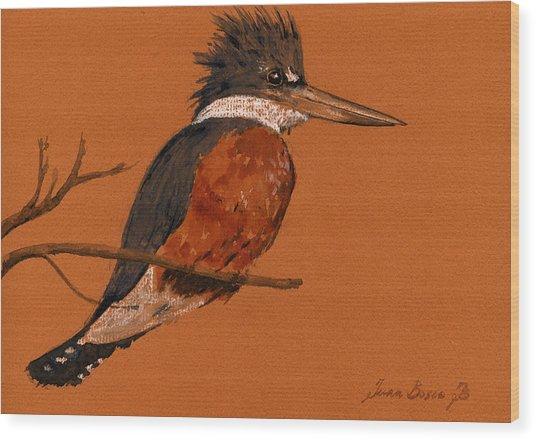 Ringed Kingfisher Bird Wood Print