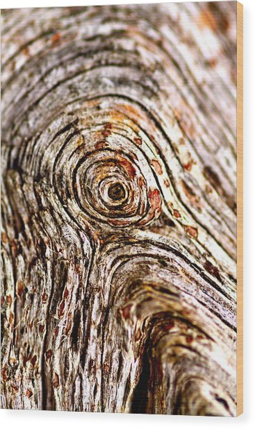 Rings Wood Print