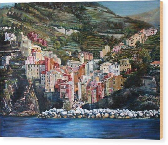 Riomaggiore Glory- Cinque Terre Wood Print by Jennifer Lycke