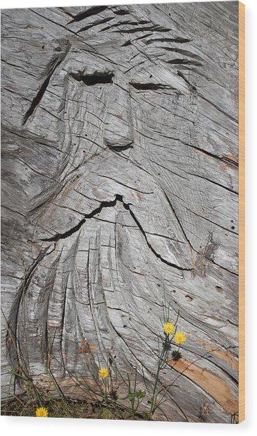 Rip Van Winkle Wood Print
