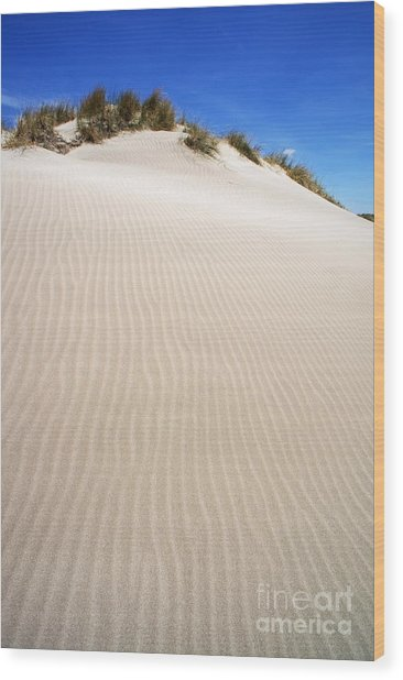 Ripples In Sand Dune Wood Print by Sami Sarkis