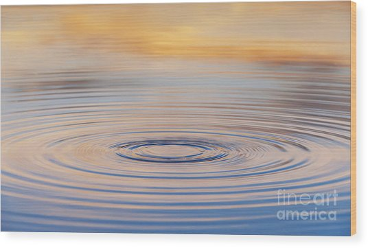 Ripples On A Still Pond Wood Print