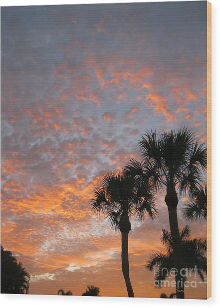 Rise And Shine. Florida. Morning Sky View Wood Print