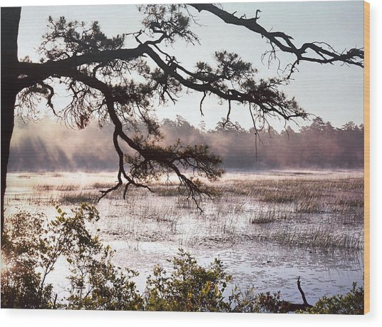 Rising Mist On Batsto Lake Wood Print