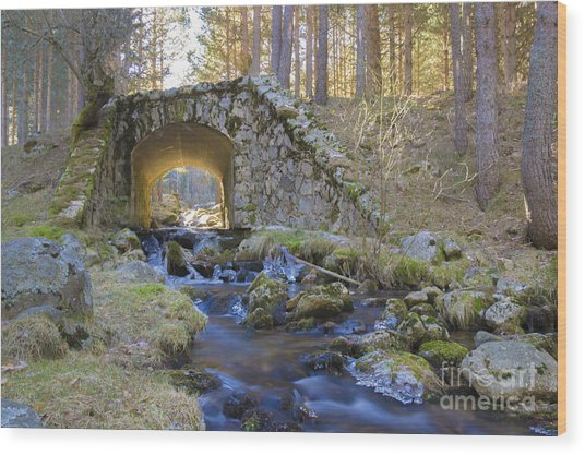 River And Bridge Wood Print