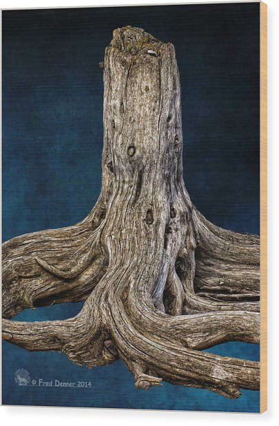 River Bar Beauty Wood Print