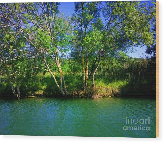 River Beauty Wood Print