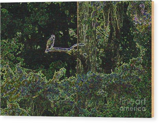 River Bird Of Prey Wood Print