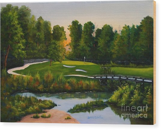 River Course #16 Wood Print