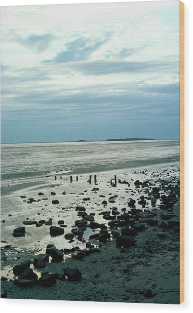 River Dee Estuary Wood Print by Dr Rob Stepney/science Photo Library