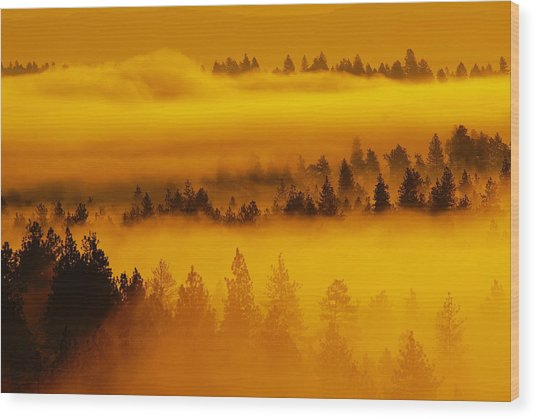 River Fog Rising Wood Print