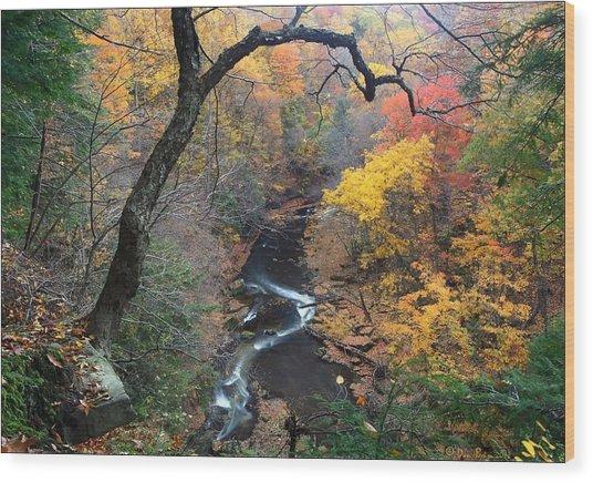 River Gorge Wood Print