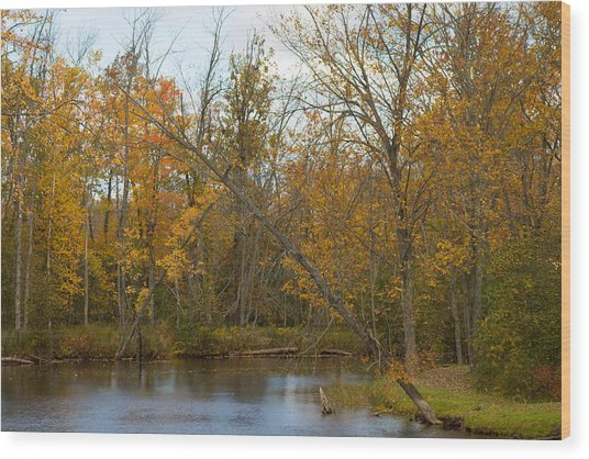 River In Autumn Wood Print by Rhonda Humphreys