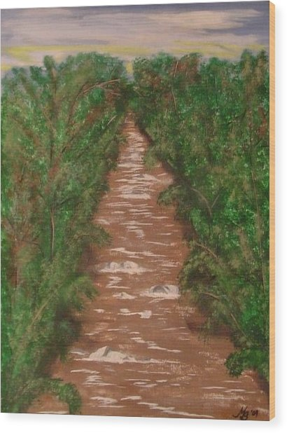 River In Tennessee Wood Print by Melanie Blankenship