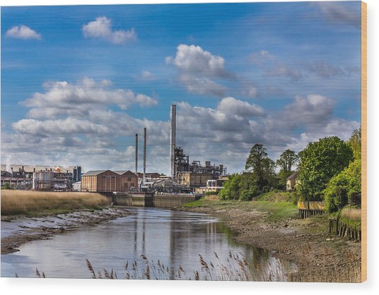 River View. Wood Print by Gary Gillette