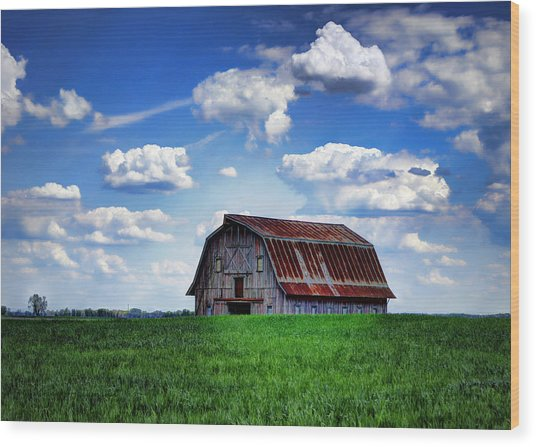 Riverbottom Barn Against The Sky Wood Print