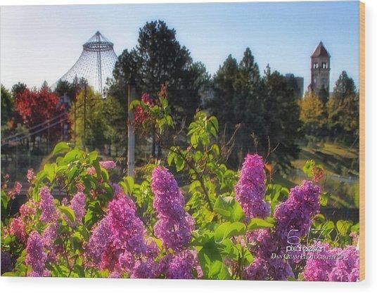 Riverfront Park Lilac Wood Print by Dan Quam