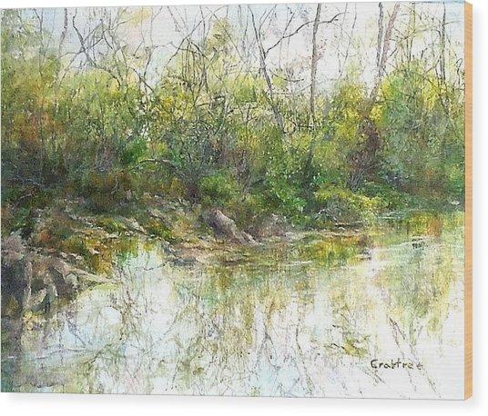 River's Edge Wood Print by Elizabeth Crabtree
