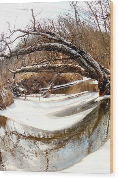 Rivers Eye Wood Print by Sharon Costa