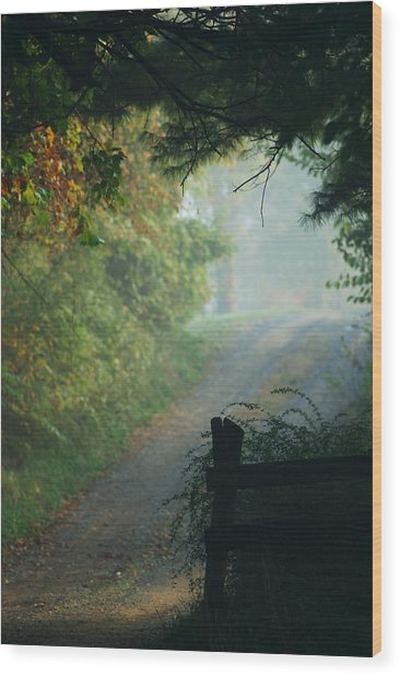 Road Goes On Wood Print