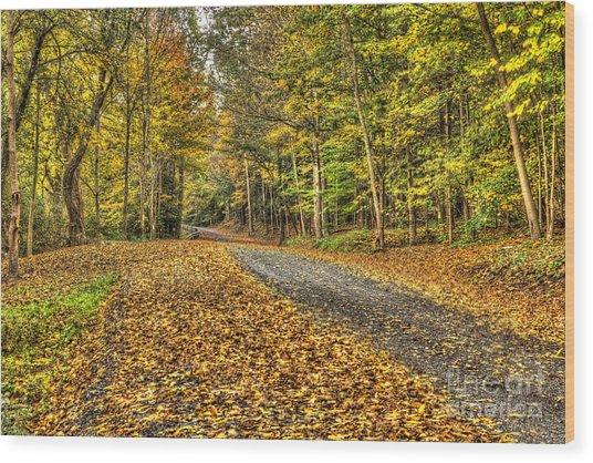 Road Into Woods Wood Print