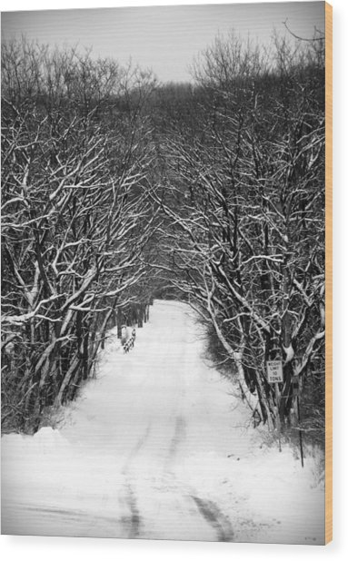Road Less Traveled Wood Print by Jennifer Compton