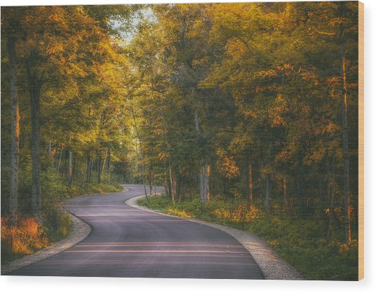 Road To Cave Point Wood Print