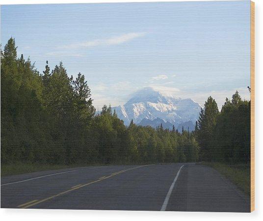 Road To Denali  Wood Print