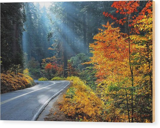 Road To Glory  Wood Print