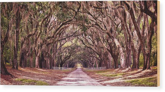 Road To The South Wood Print
