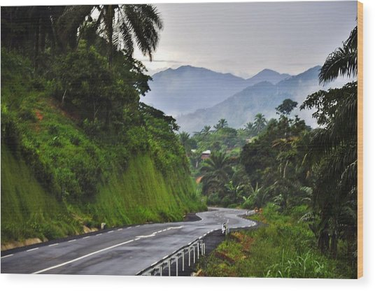 Roads Wood Print by Manu G