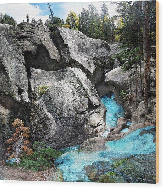 Roaring Fork Wood Print by Ric Soulen