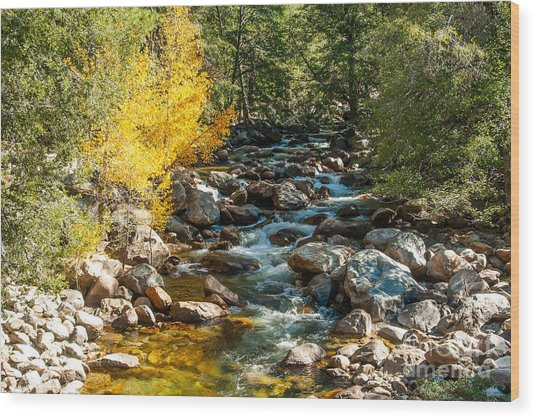 Roaring River 1-7782 Wood Print by Stephen Parker