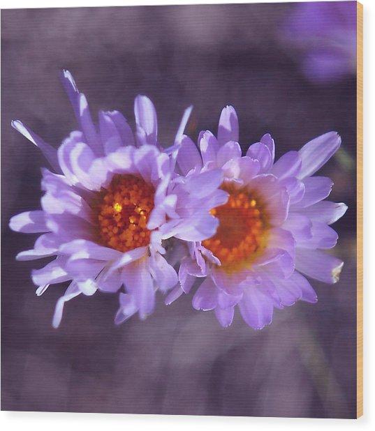 Robert Melvin - Fine Art Photography - Purple Morning Wood Print