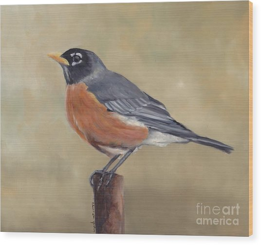 Robin Wood Print by Charlotte Yealey