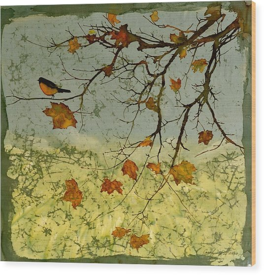 Robin In Maple Wood Print
