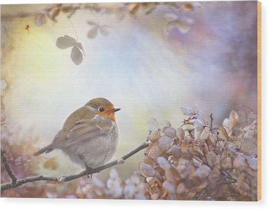 Robin On Dreams Wood Print