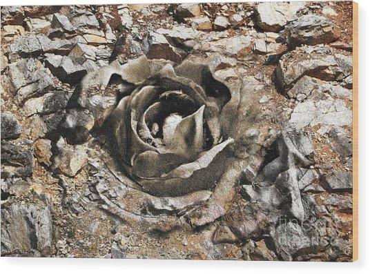 Rock And Rose 2 Wood Print