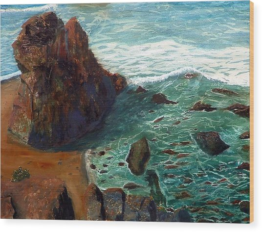 Rock Beach And Sea Wood Print