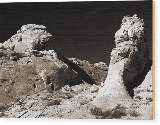 Rock Chatter Wood Print by John Rizzuto
