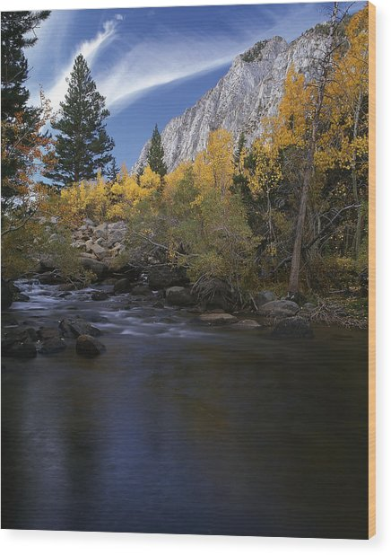 Rock Creek Canyon Gold Wood Print