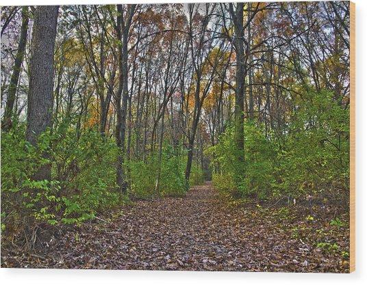 Rock Cut Path 2 Wood Print by Jim Baker