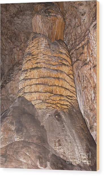 Rock Of Ages Carlsbad Caverns National Park Wood Print