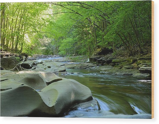 Rock Run #1 - Loyalsock State Forest Wood Print