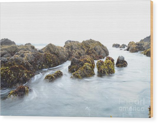 Rock The Seascape Wood Print by Sheldon Blackwell