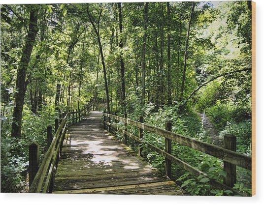 Rockbridge Summer Wood Print