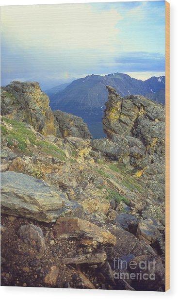 Rockcut In Rocky Mtn National Park Wood Print