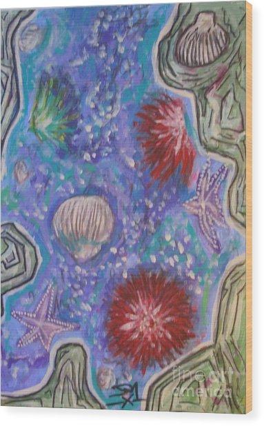 Rockpool Wood Print by Jedidiah Morley